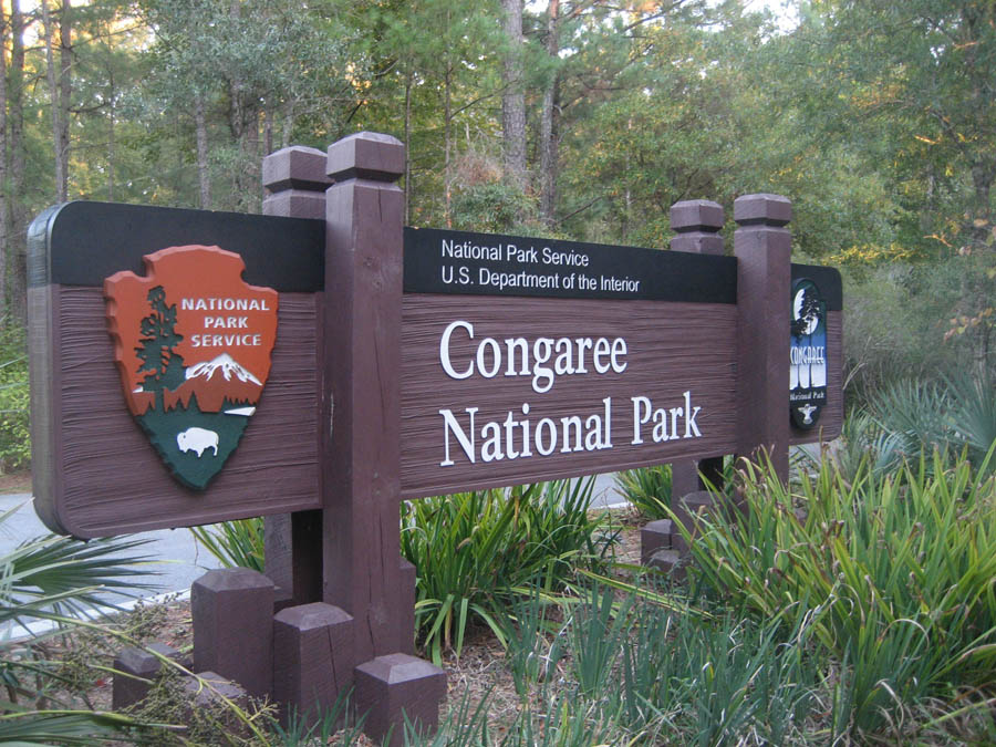 Congaree National Park | Take To The Highway