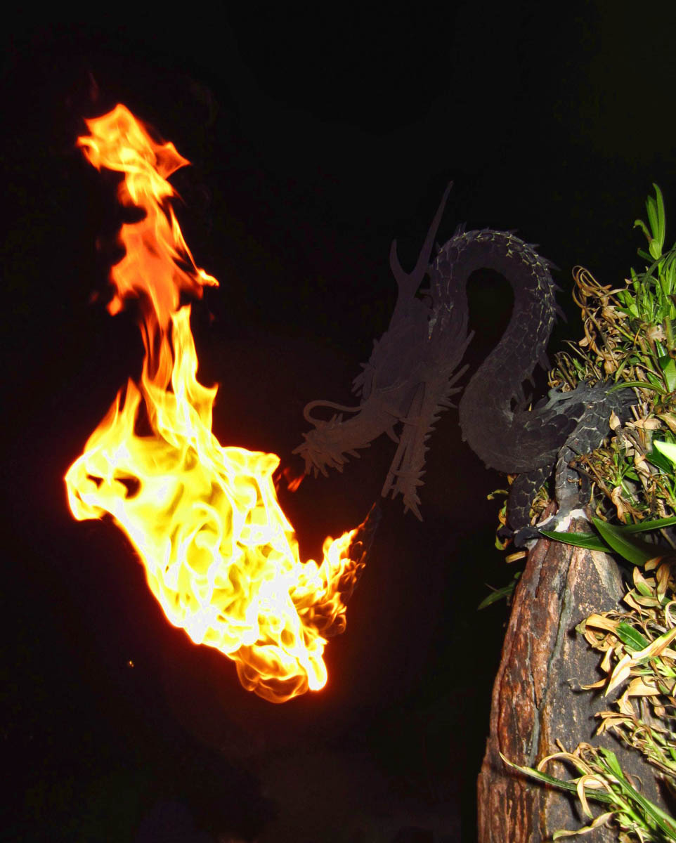 """Dragon in the Desert"" outdoor lamp."