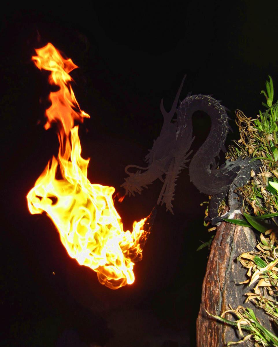 """Dragon in the Desert"" outdoor lamp."
