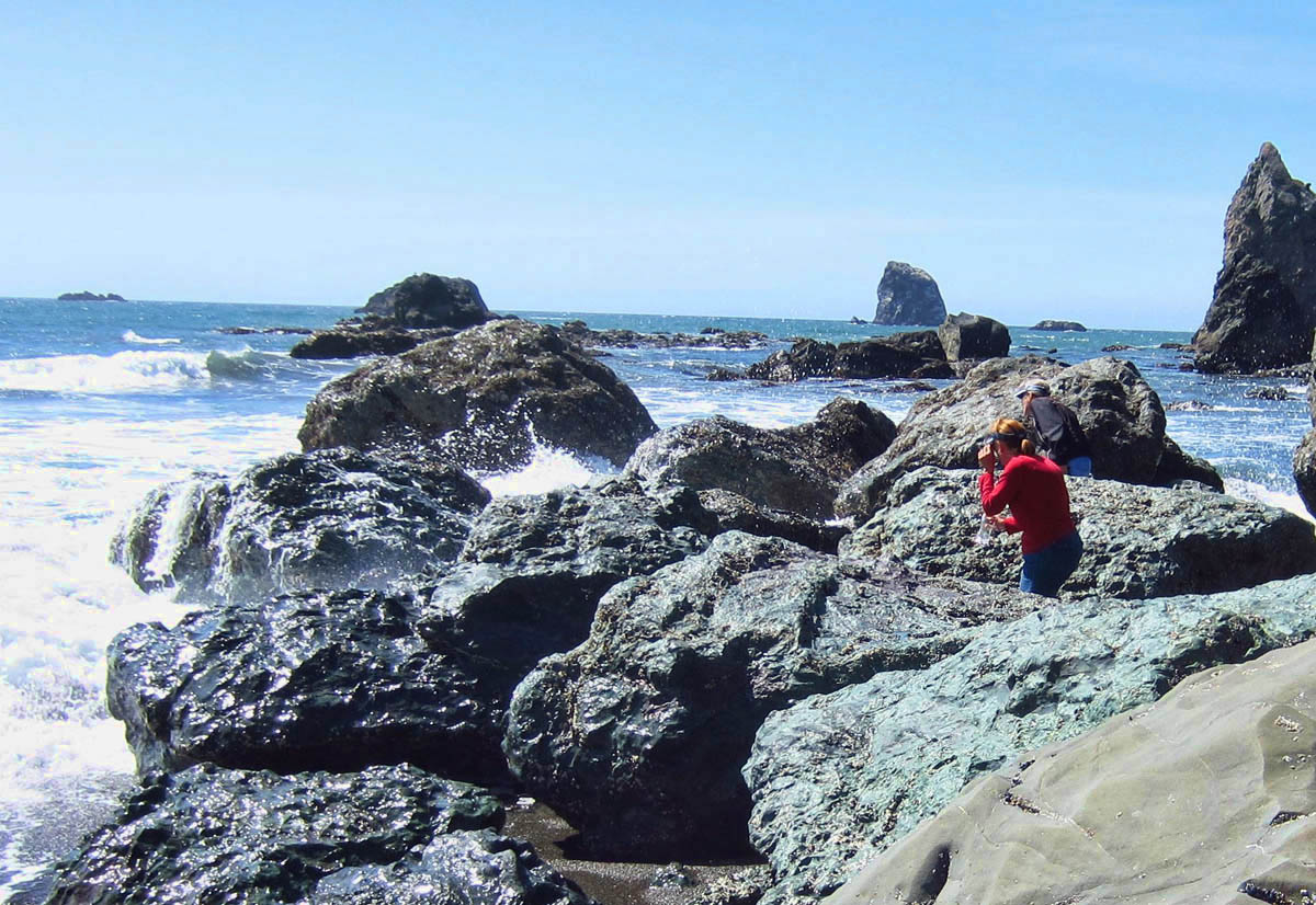 Debbie and Gayle searching the tide pools for treasures.
