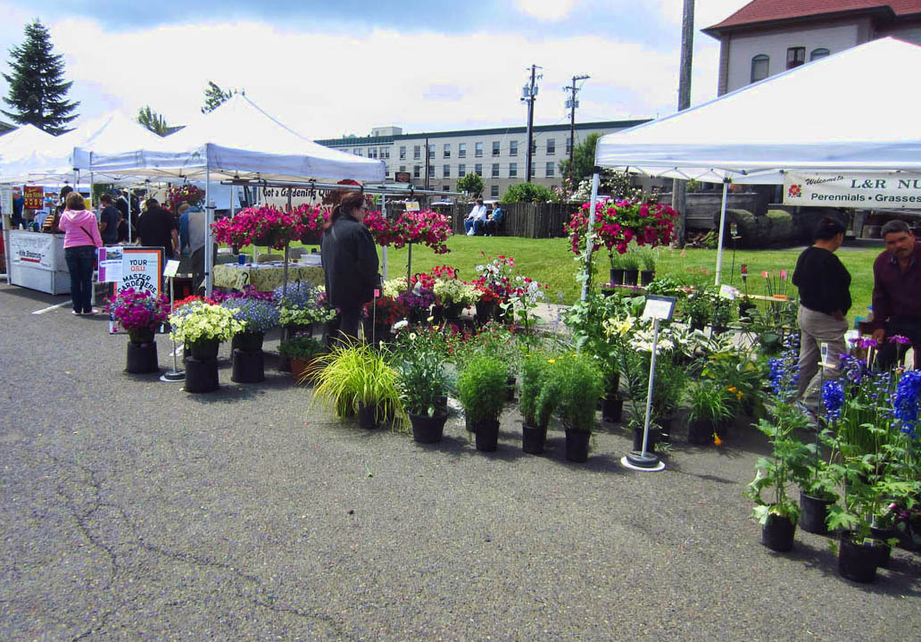 Tillamook Farmer's Market