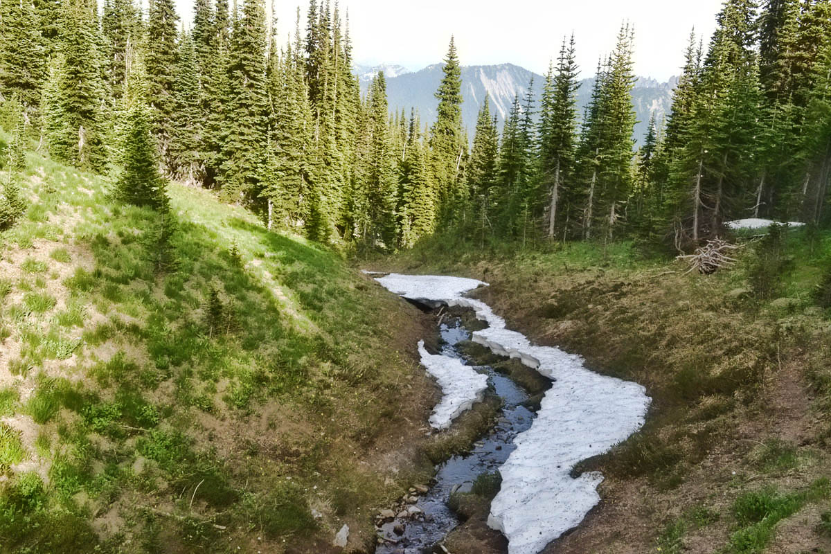 Thawing stream along the Wonderland Trail