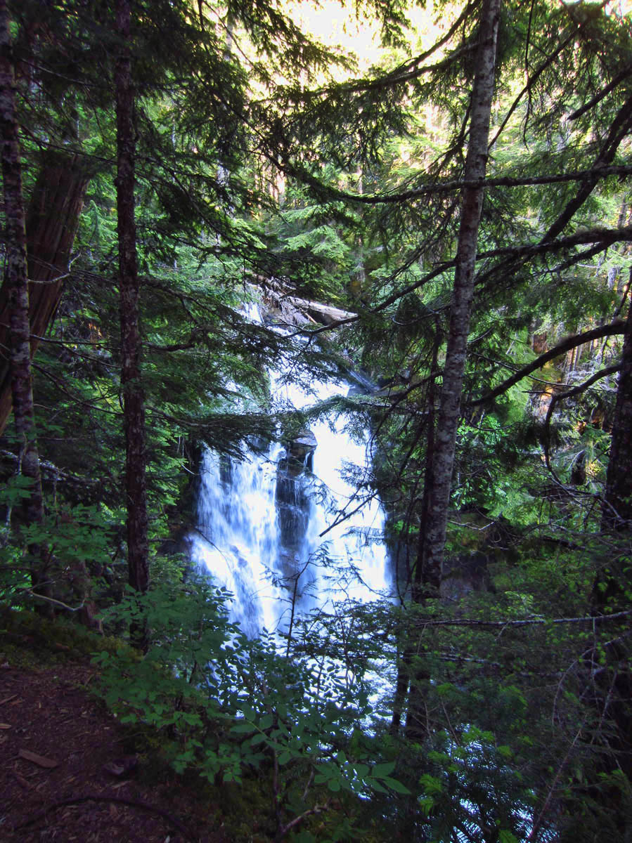 Part of Wonderland Trail has views of three waterfalls; Carter Falls, Madcap Falls, and Narada Falls, all seen on 5.4 mile out and back...