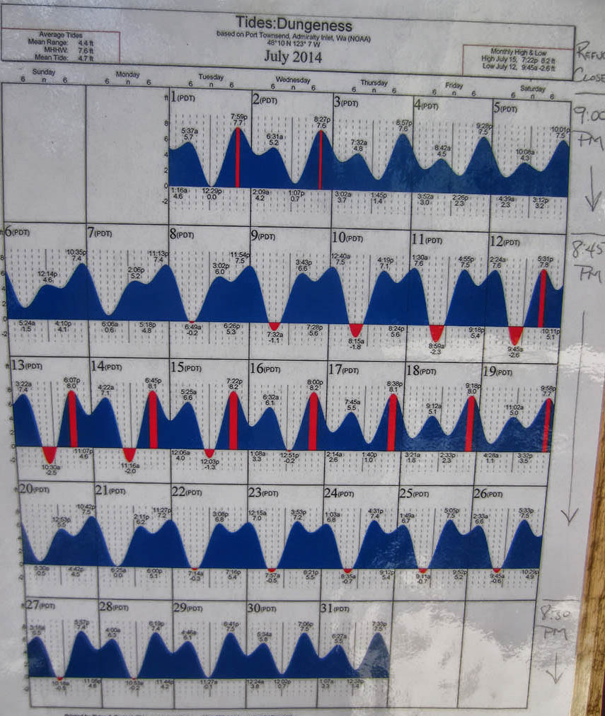 Tide Table for Dungeness Spit