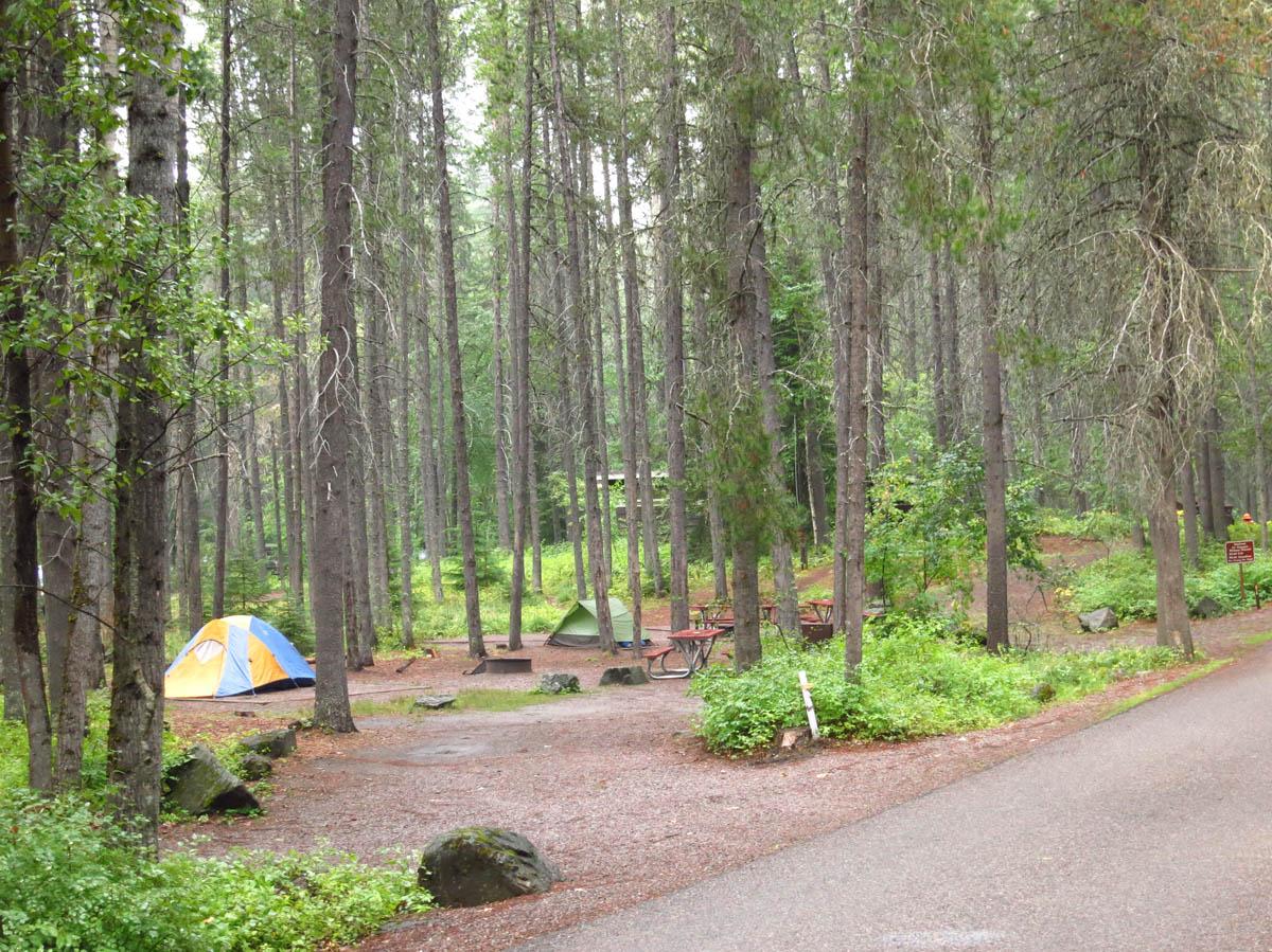 Apgar Campground, near West Glacier