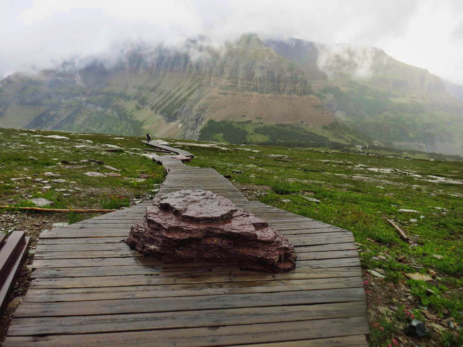 Love the creative way they built the trail to part around this rock.