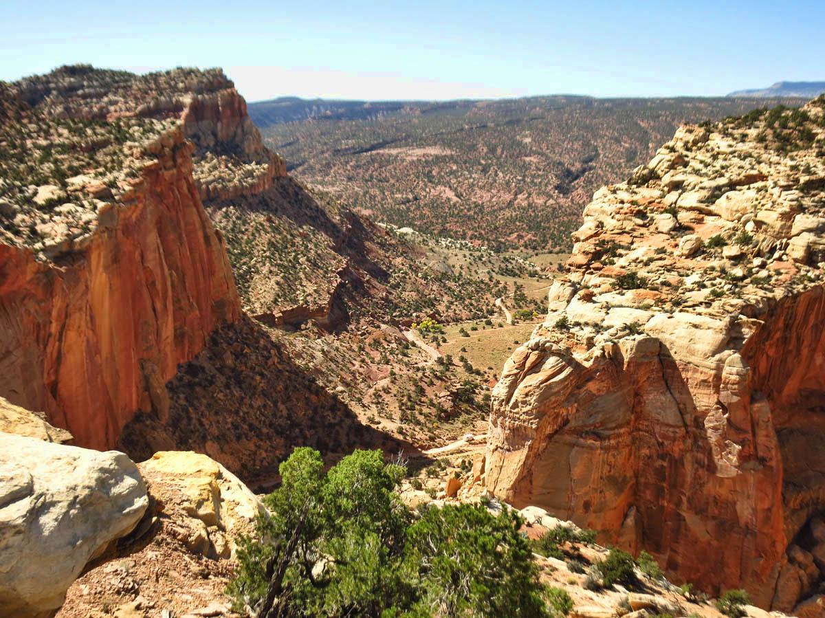 Overlook of the Scenic Drive below