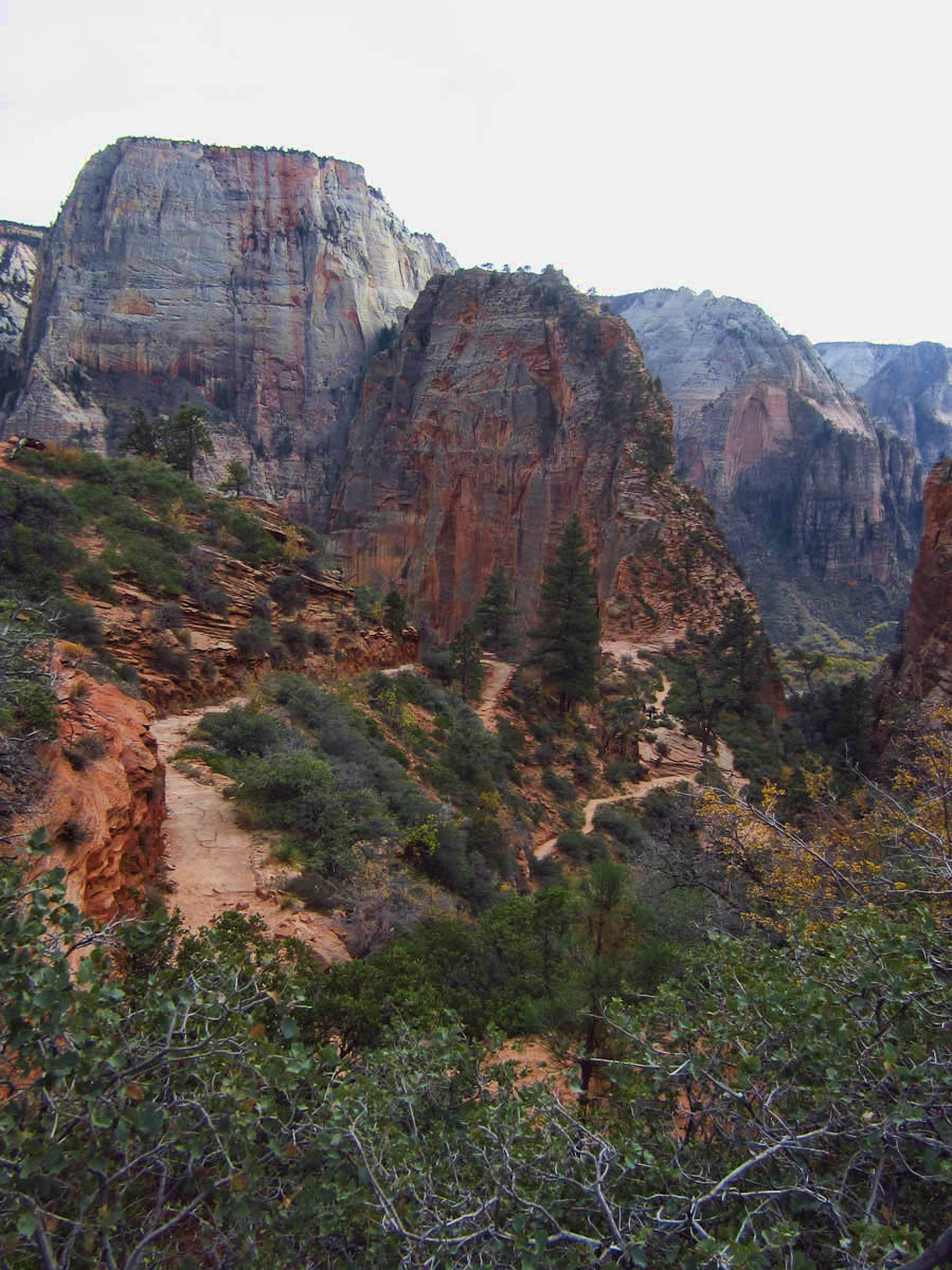 View of Angel's Landing ascent from West Rim Trail