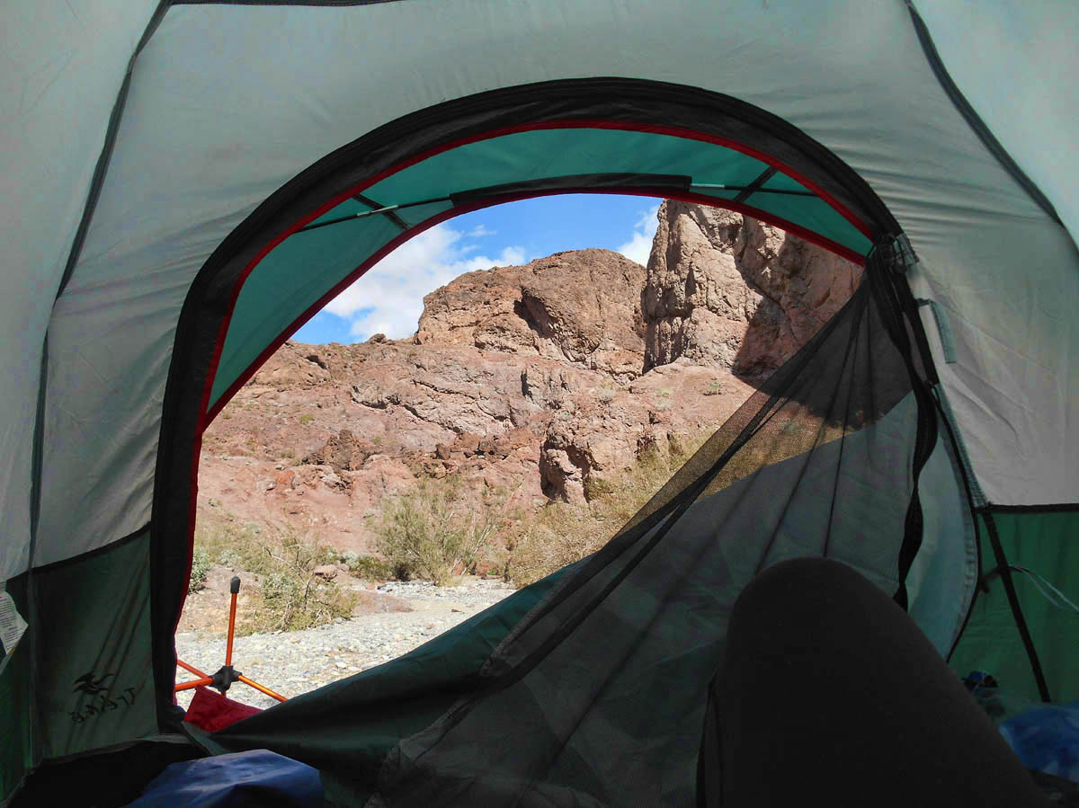 View from my tent window