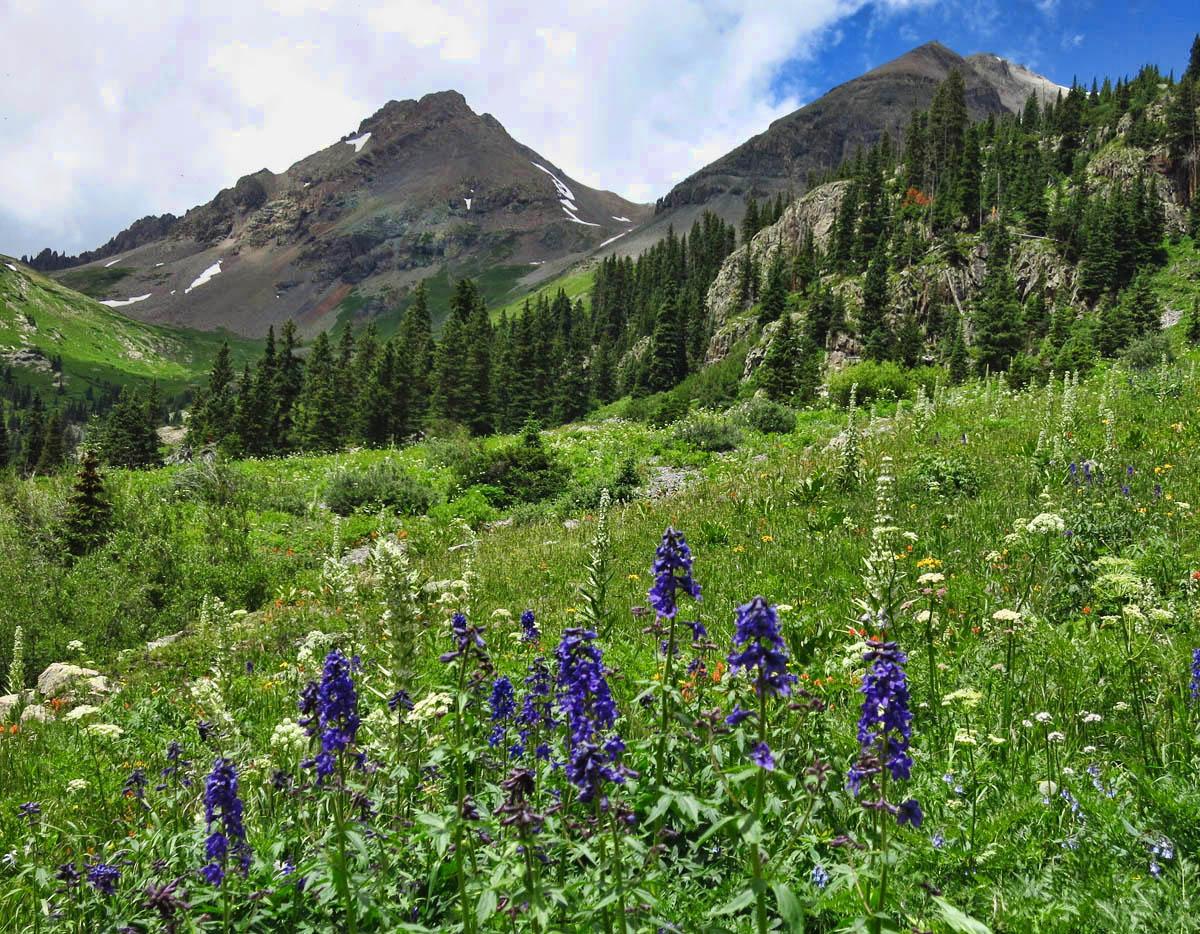 Mt. Sneffels in blue