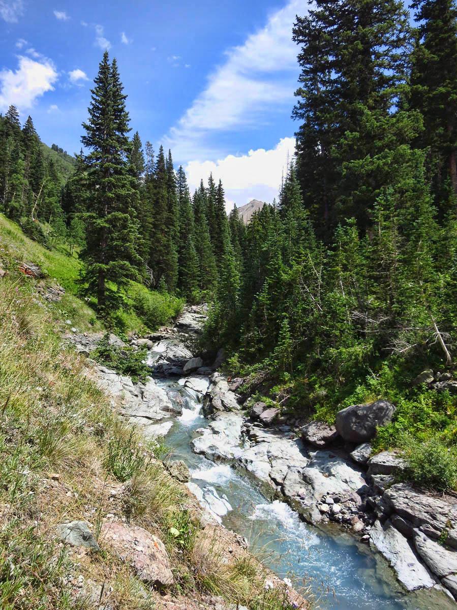 Trail follows Bear Creek up the mountain.