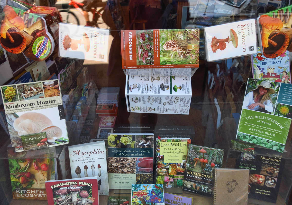 An entire bookstore window display dedicated to mycophilia.