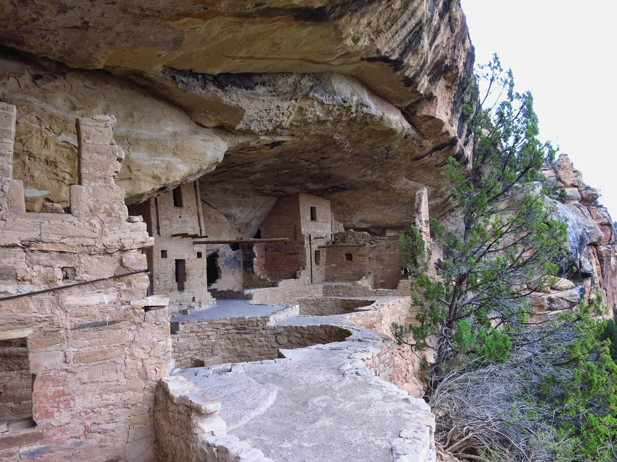 Balcony House only had 2 kivas, constructed side by side in the center of the house.