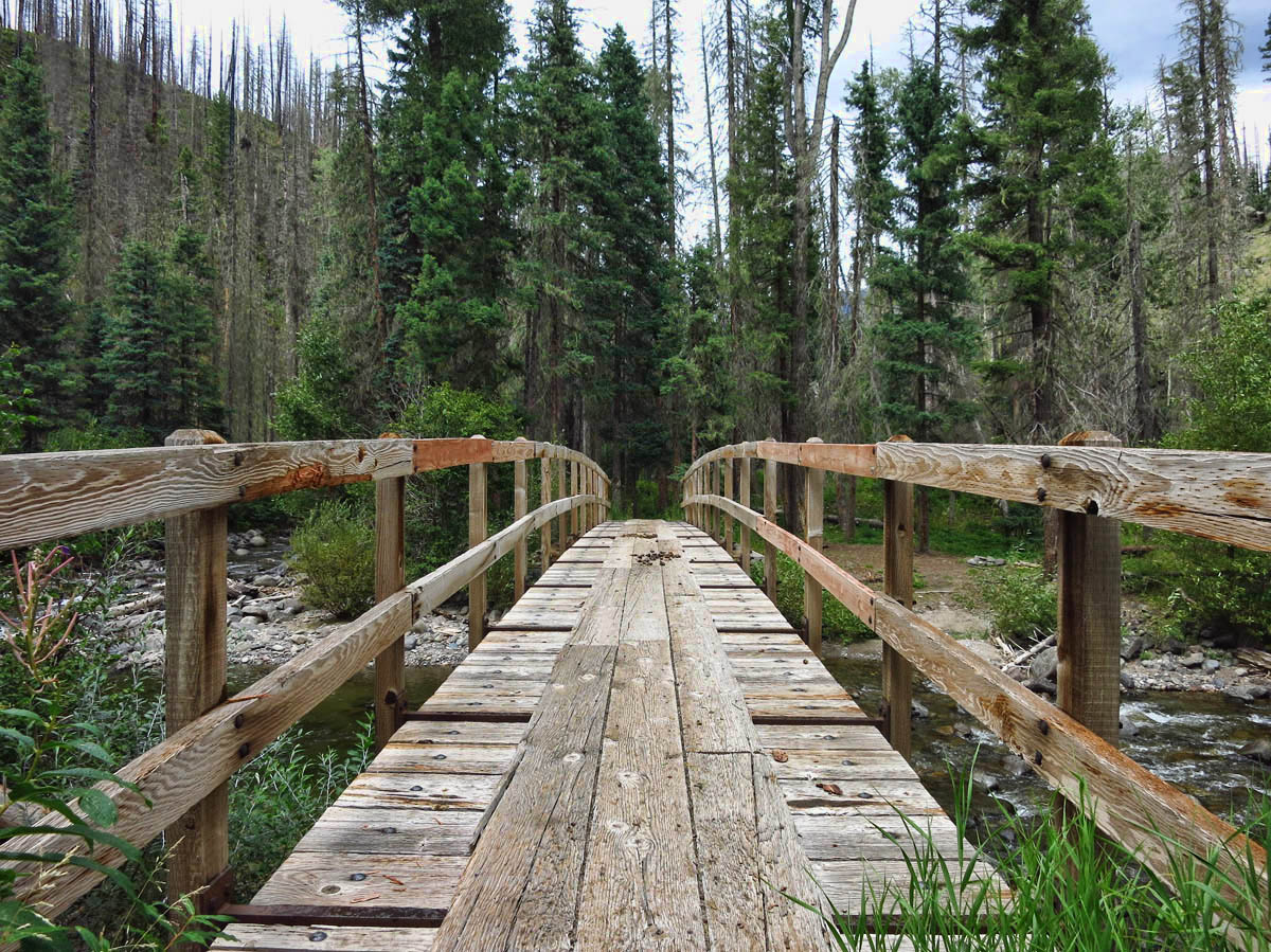 I love that the Forest Service built these big fancy bridges for hikers and equestrians.