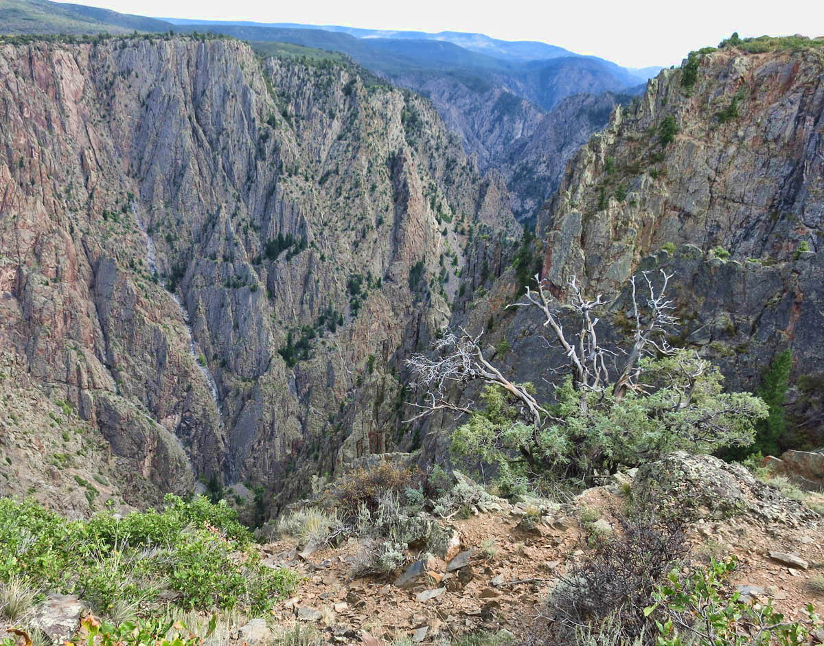 View of Black Canyon from Rim Nature Trail.