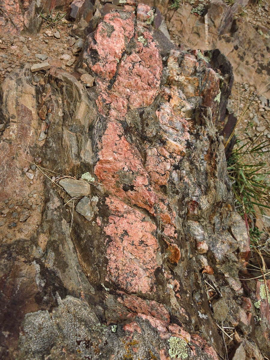 Beautiful pink pegmatite is interspersed all through the canyon walls.