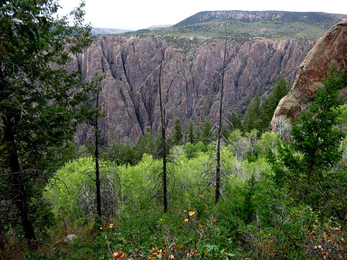 View from Oak Flats Loop trail.