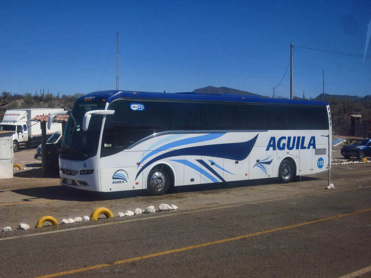 "There are two bus lines that cover Baja -- ABC, and Aguila, which seems a little nicer.  Gotta love that ""WiFi"" sign in the driver's window!  It really works!"