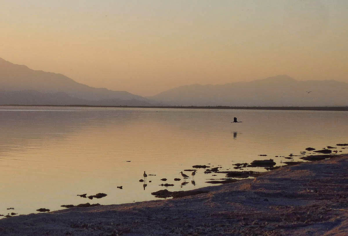 The Salton Sea is California's largest lake. It's 225 below sea level, second lowest point in the USA behind Death Valley.