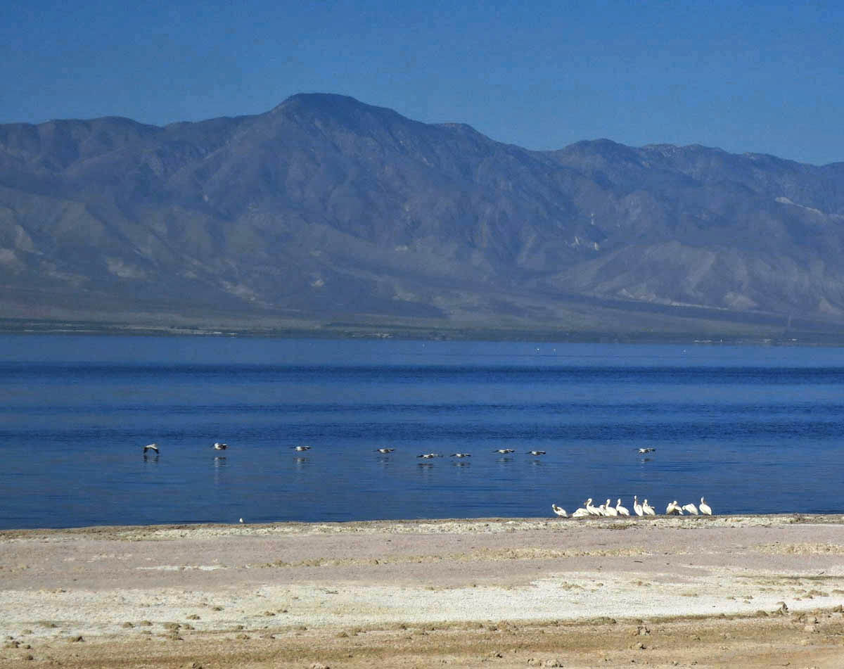 I only stay one night at the Salton Sea...