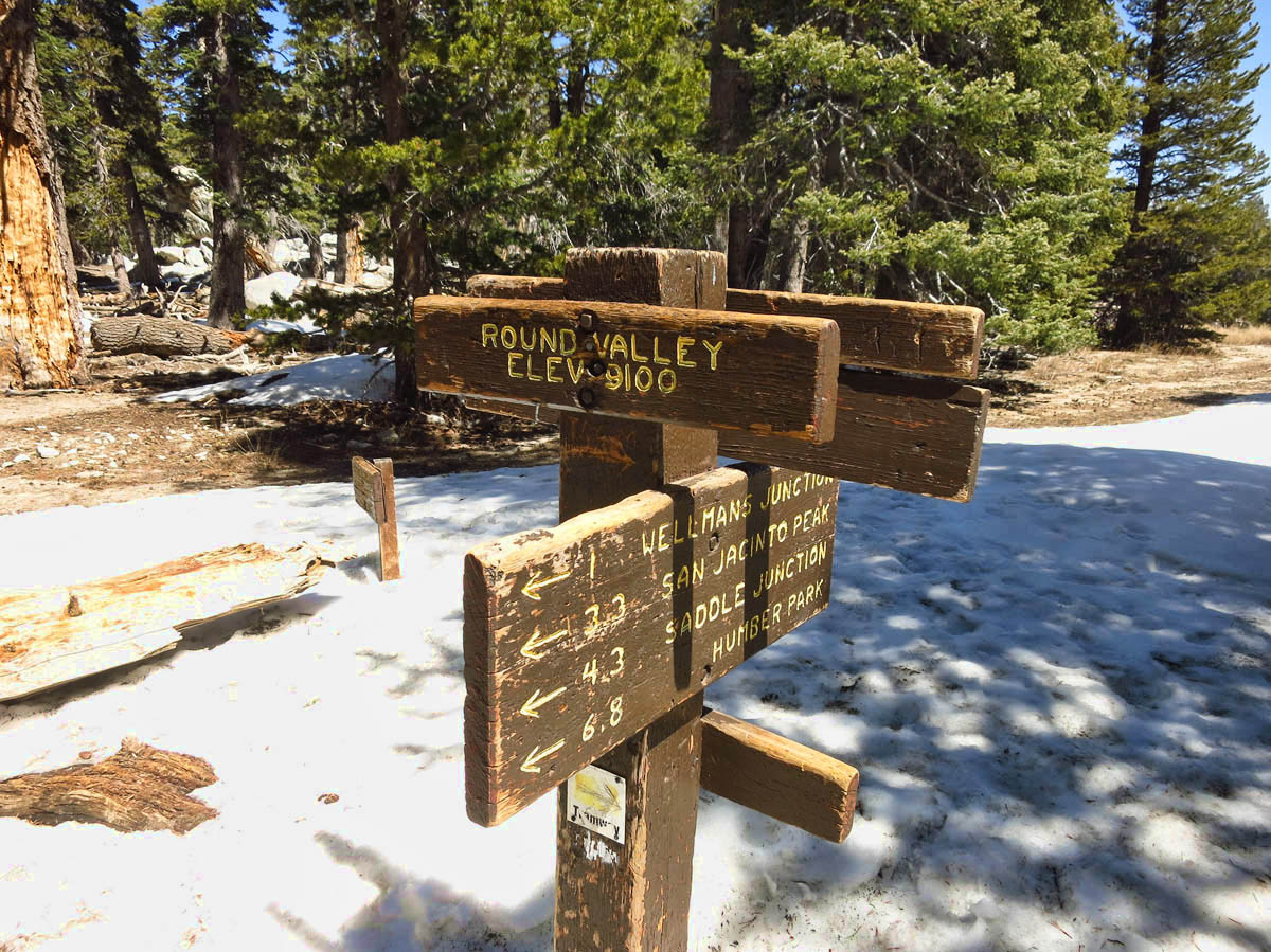 Elev 9,100 ft. I can't believe Saddle Junction, where Jim, Gayle and I hiked from Idyllwild last year is only 4.3 miles!