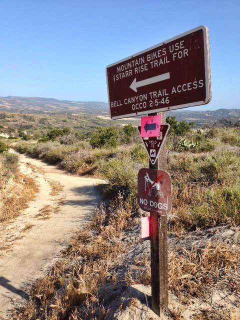 No dogs on the trails, or in the campground!