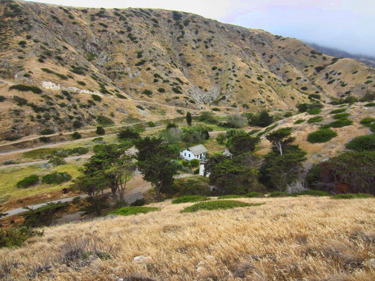 """Remnants of """"Scorpion Ranch,"""" a sheep ranch that existed on the island at the turn of the century."""