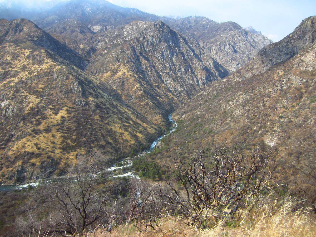 "Looking down over Kings Canyon and the Kings River from the ""Junction"" where Middle Fork and South Fork meet."