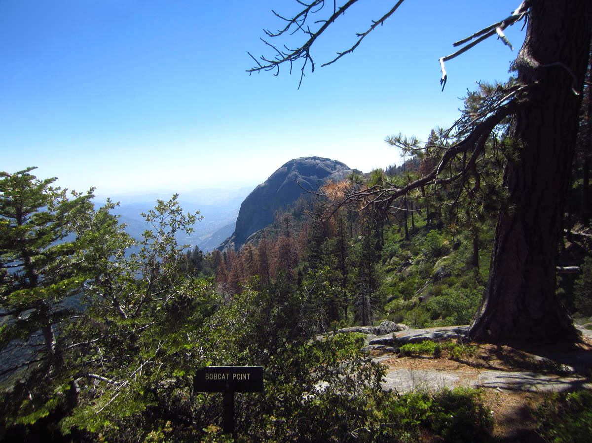 View of Moro Rock from Bobcat Point, on the Sugar Pine Trail. If I could zoom, you would see dozens of people up there.