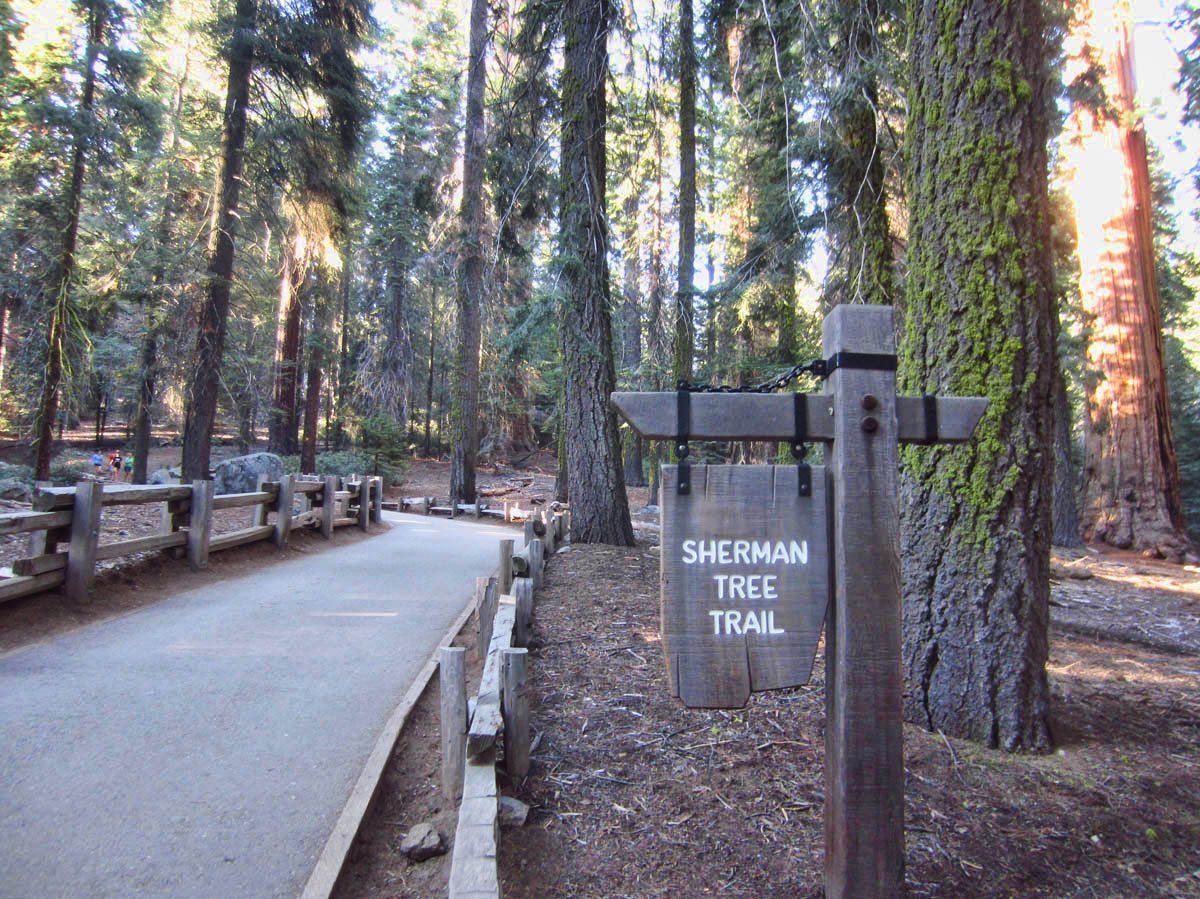 General Sherman has his own trail