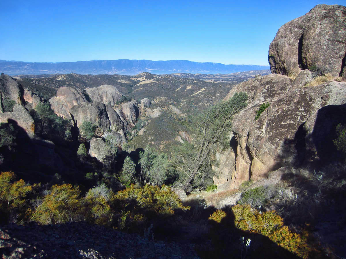 Pinnacles has a Condor Reintroduction program, whereby birds raised in captivity are released into the wild.