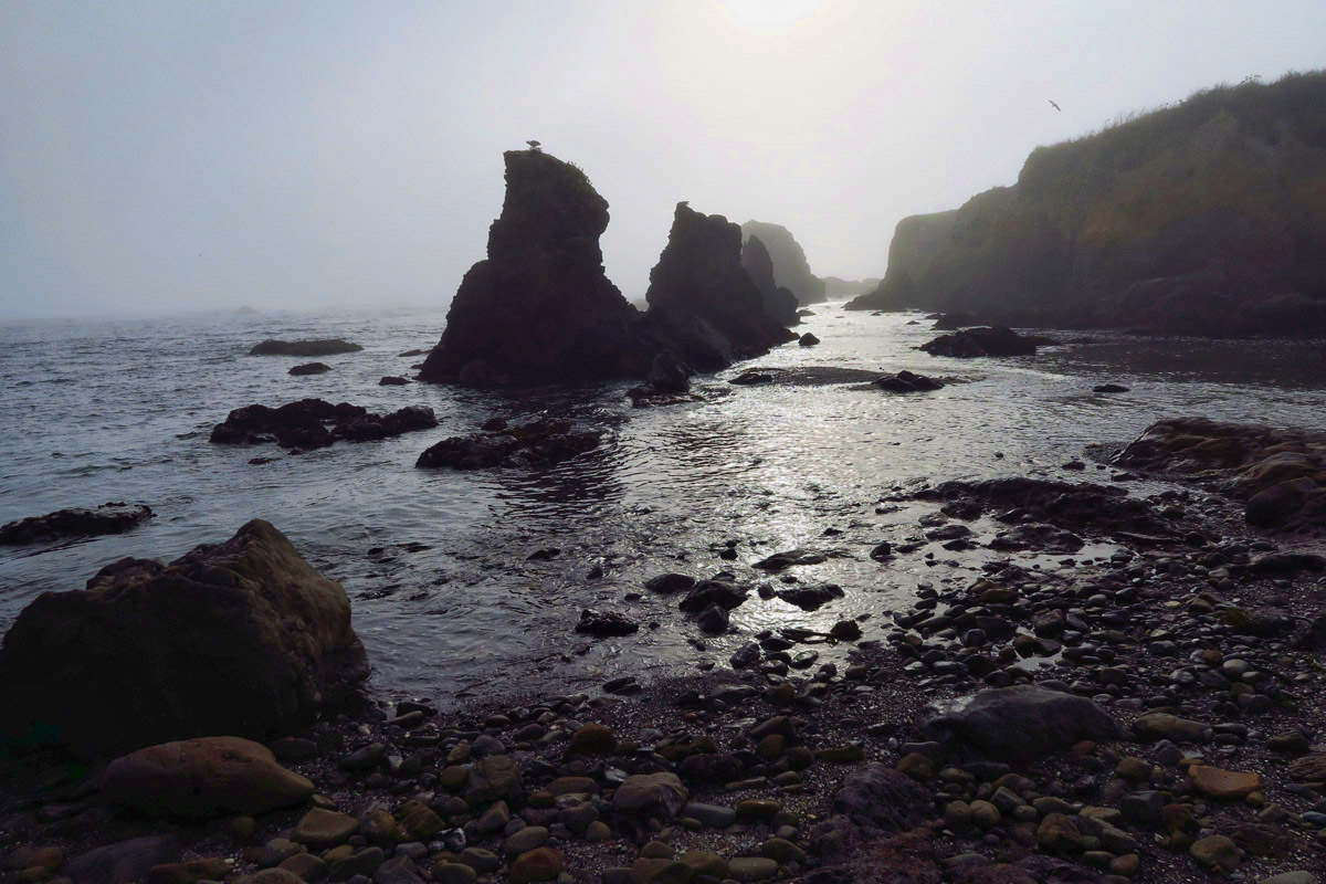 A foggy day at Glass Beach
