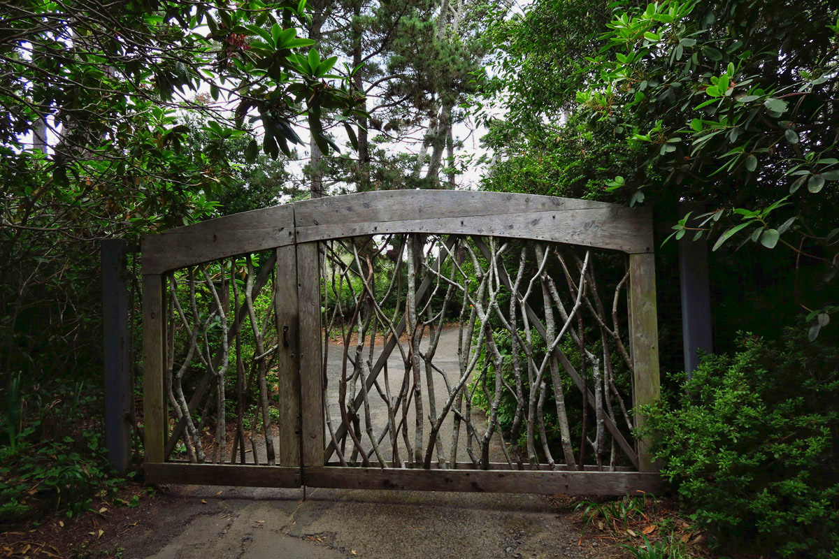 In between Fort Bragg and Mendocino is the beautiful Mendocino Coast Botanical Gardens.