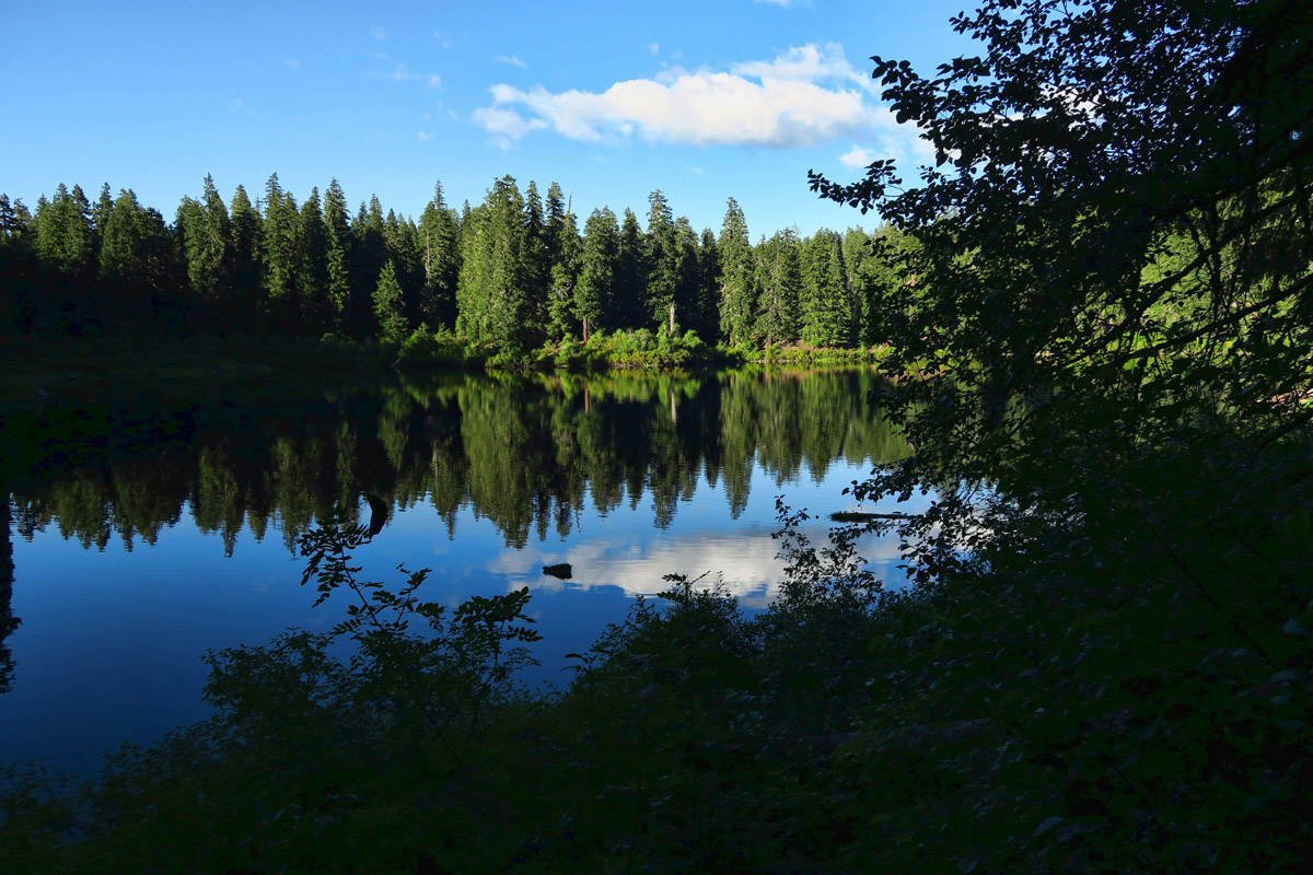 There is a nice 5 mile hiking trail that goes around the lake.