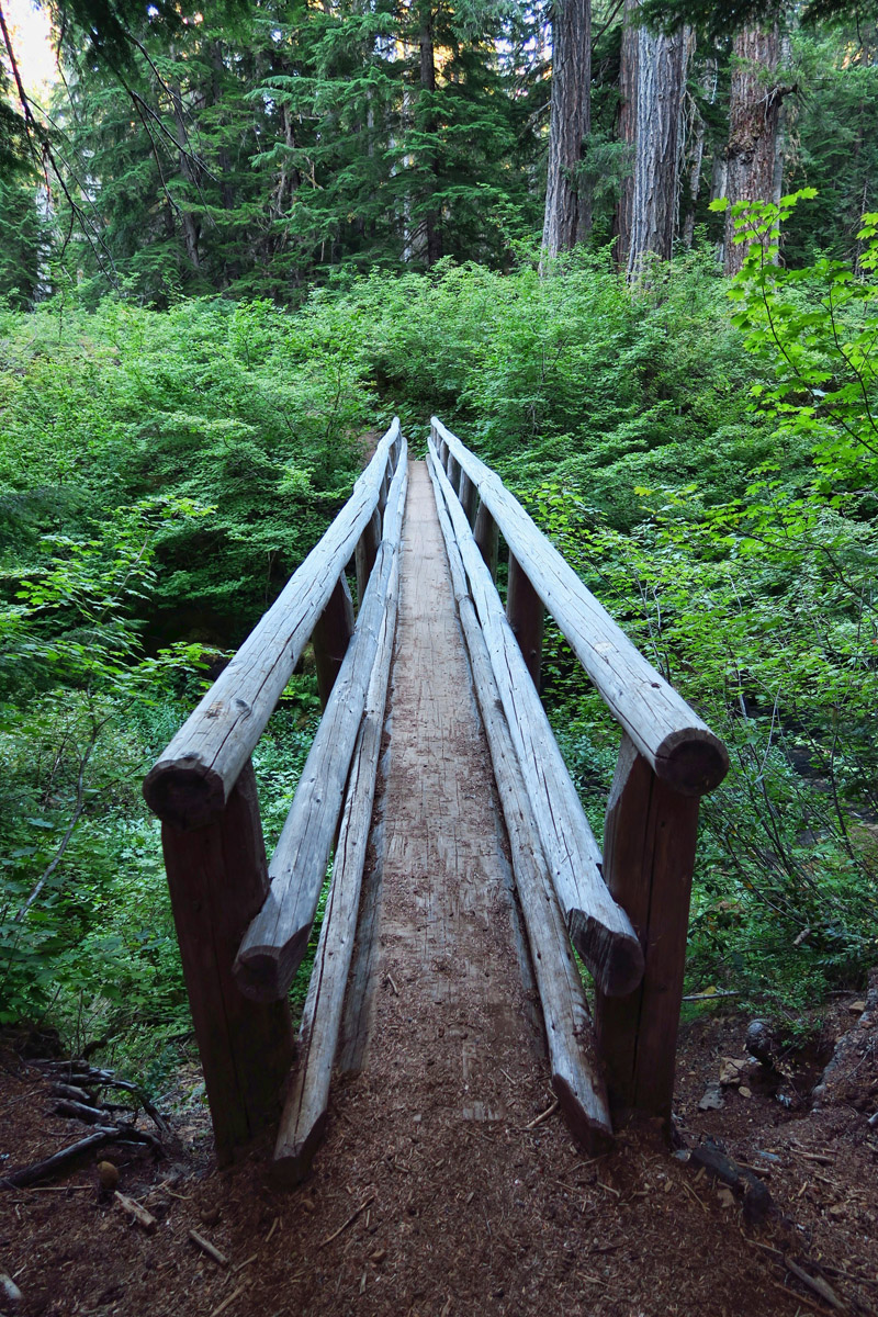 """""""You must be this skinny to cross this bridge."""" It's one continuous log, and yes, it does bounce!"""