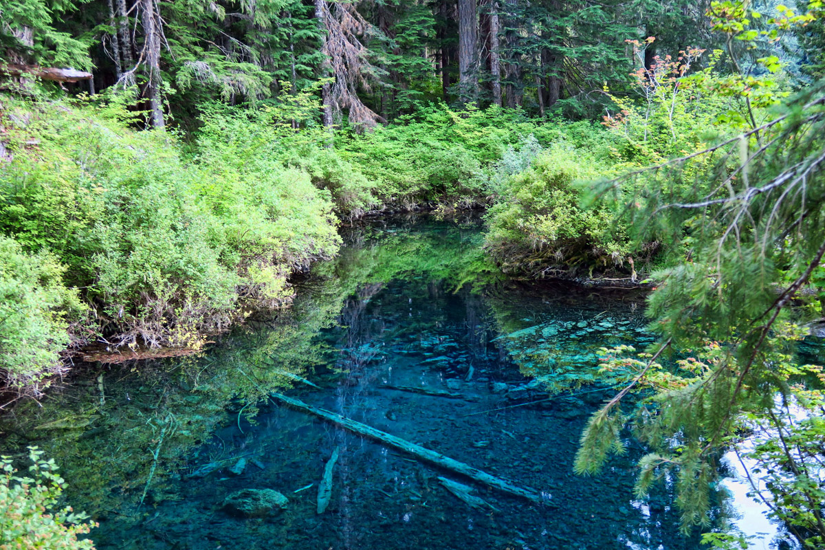 This small spring-fed pool flows into the lake.