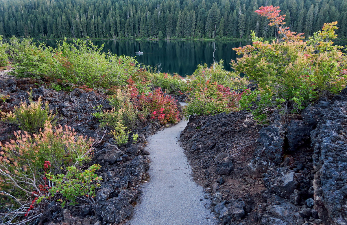 The eastern side of the hiking trail goes through a large lava field.