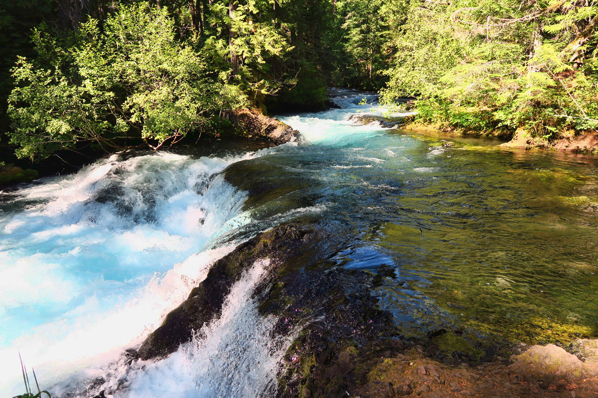 The 1.5 mile Waterfall Trail follows alongside the McKenzie River. Follow to the Carmen Reservoir, and return via McKenzie River Trail for a 3 mile loop.