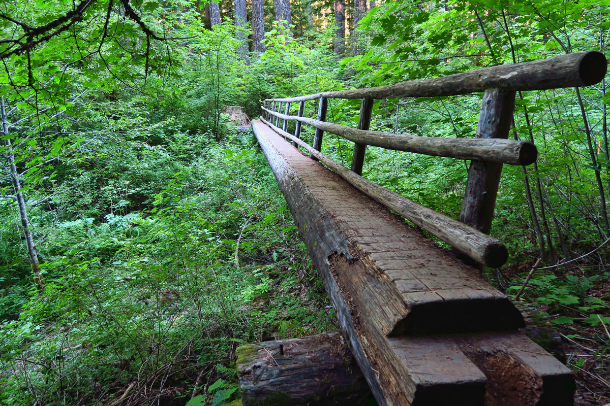 The McKenzie River Trail is best known as a 26 mile mountain bike trail. I hoped to catch someone crossing one of these many narrow bridges with a bike, but my timing was never right.