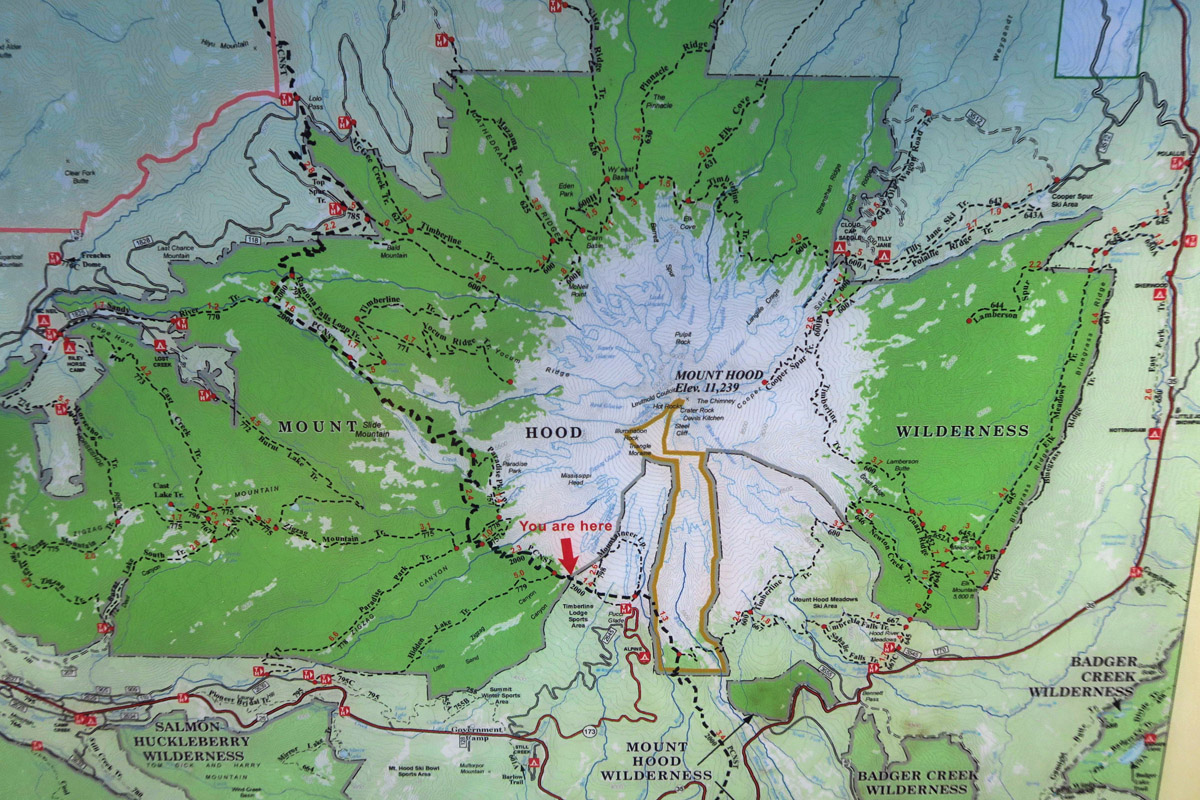The Mount Hood/Government Camp area offers a plethora of good hiking trails.