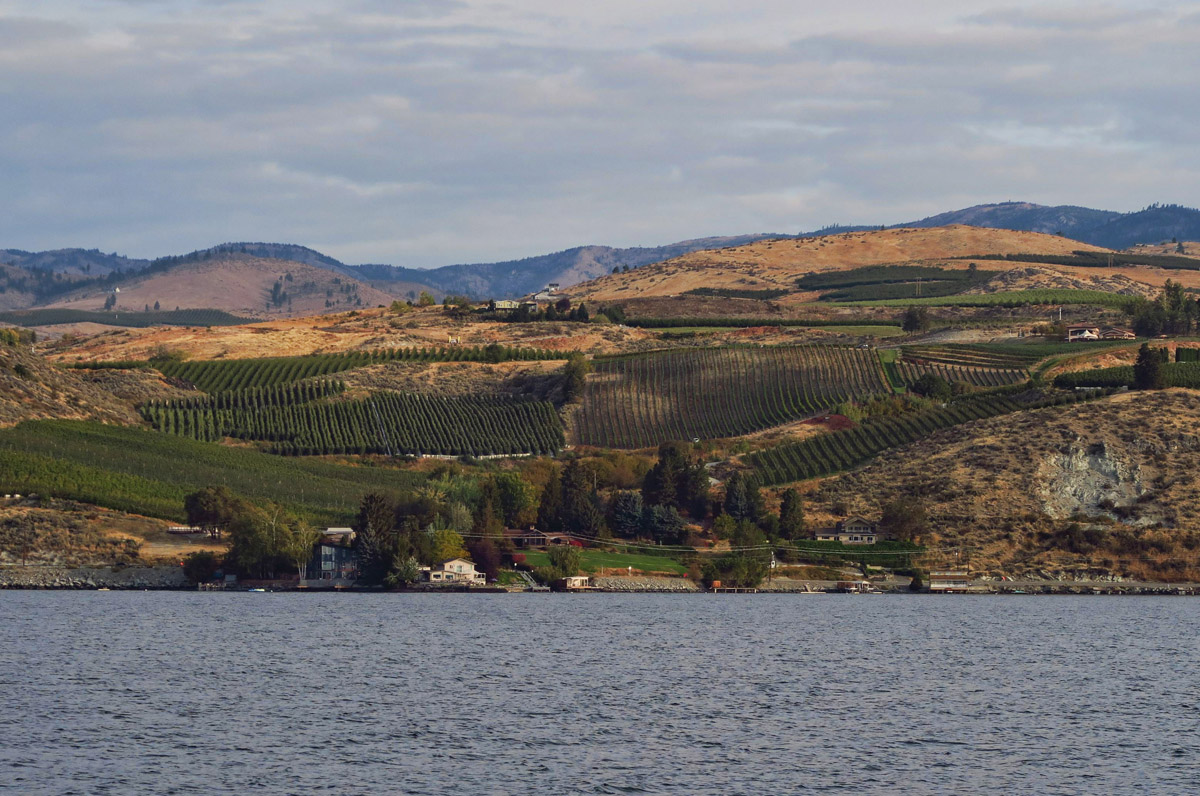 Starting out, we pass many vineyards along the arid valley of Chelan.