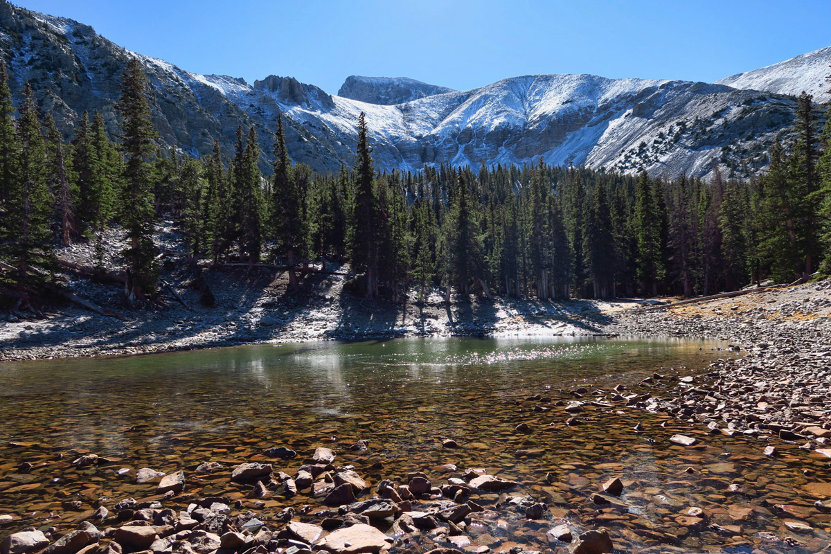 There are no fish in either Teresa or Stella Lakes, as they are shallow and freeze nearly to the bottom in winter.