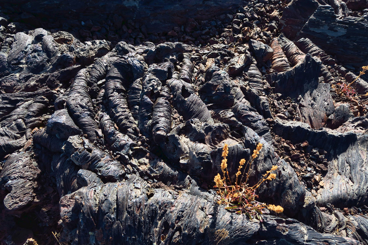 "This is known as ""pāhoehoe lava,"" which flowed as a liquid, giving it a ropy appearance."