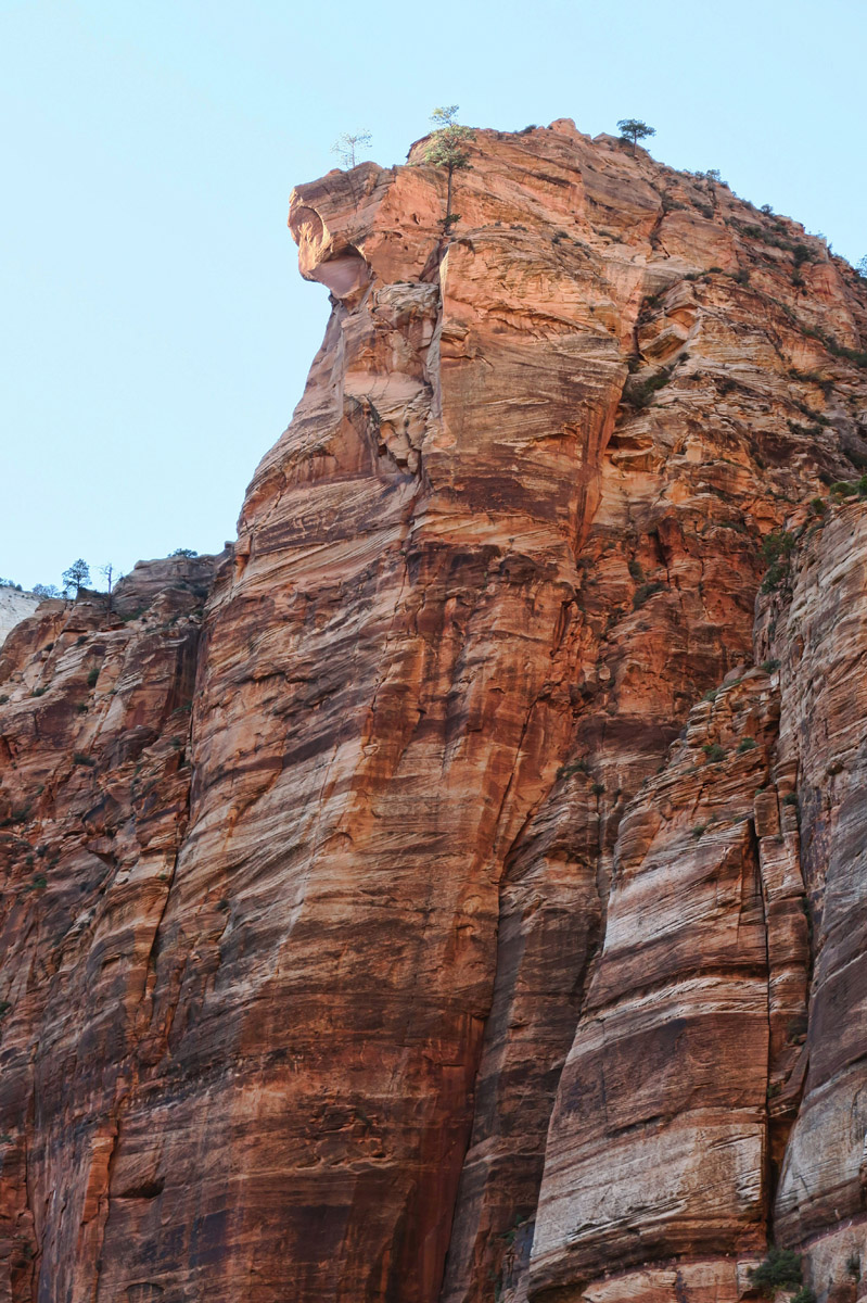 "Who couldn't find inspiration in Zion with places named ""Pulpit Rock?"""