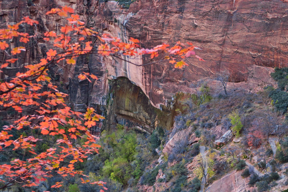 """Overlooking """"Weeping Rock"""" from the switchbacks on the way up to Observation Point."""