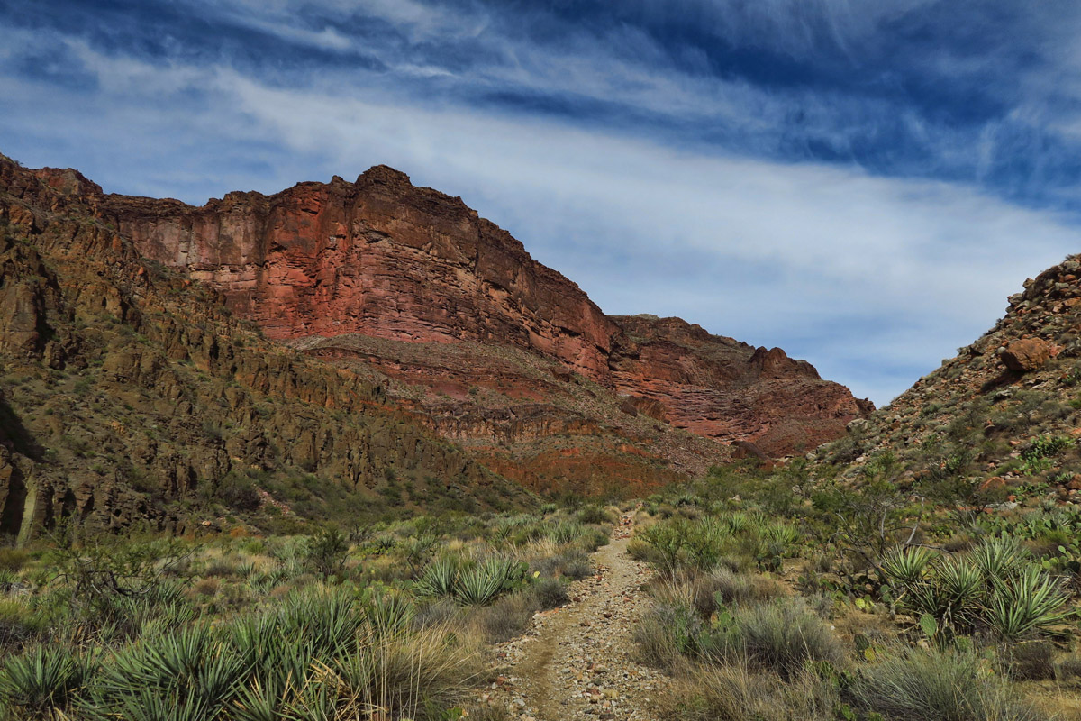 Vegetation differs greatly from the South Kaibab Trail.