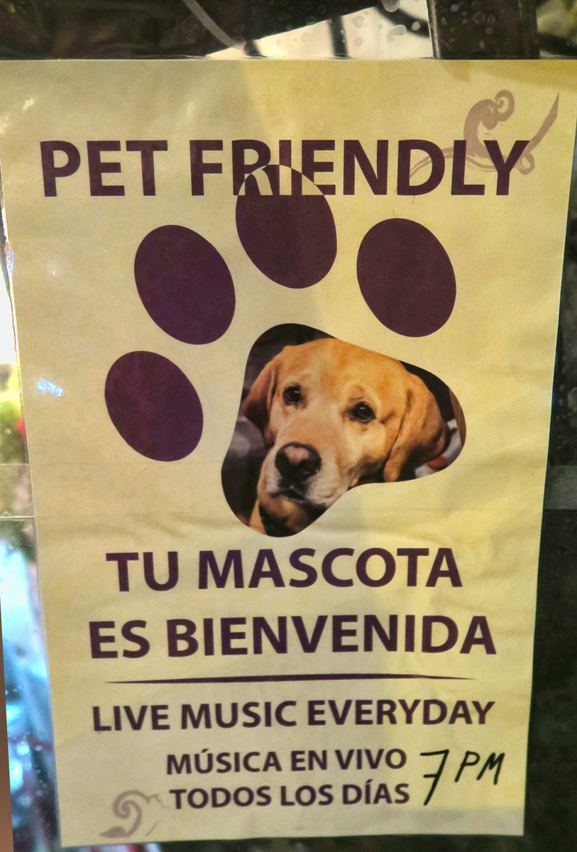 "I love the Spanish word for pet...""mascota."""