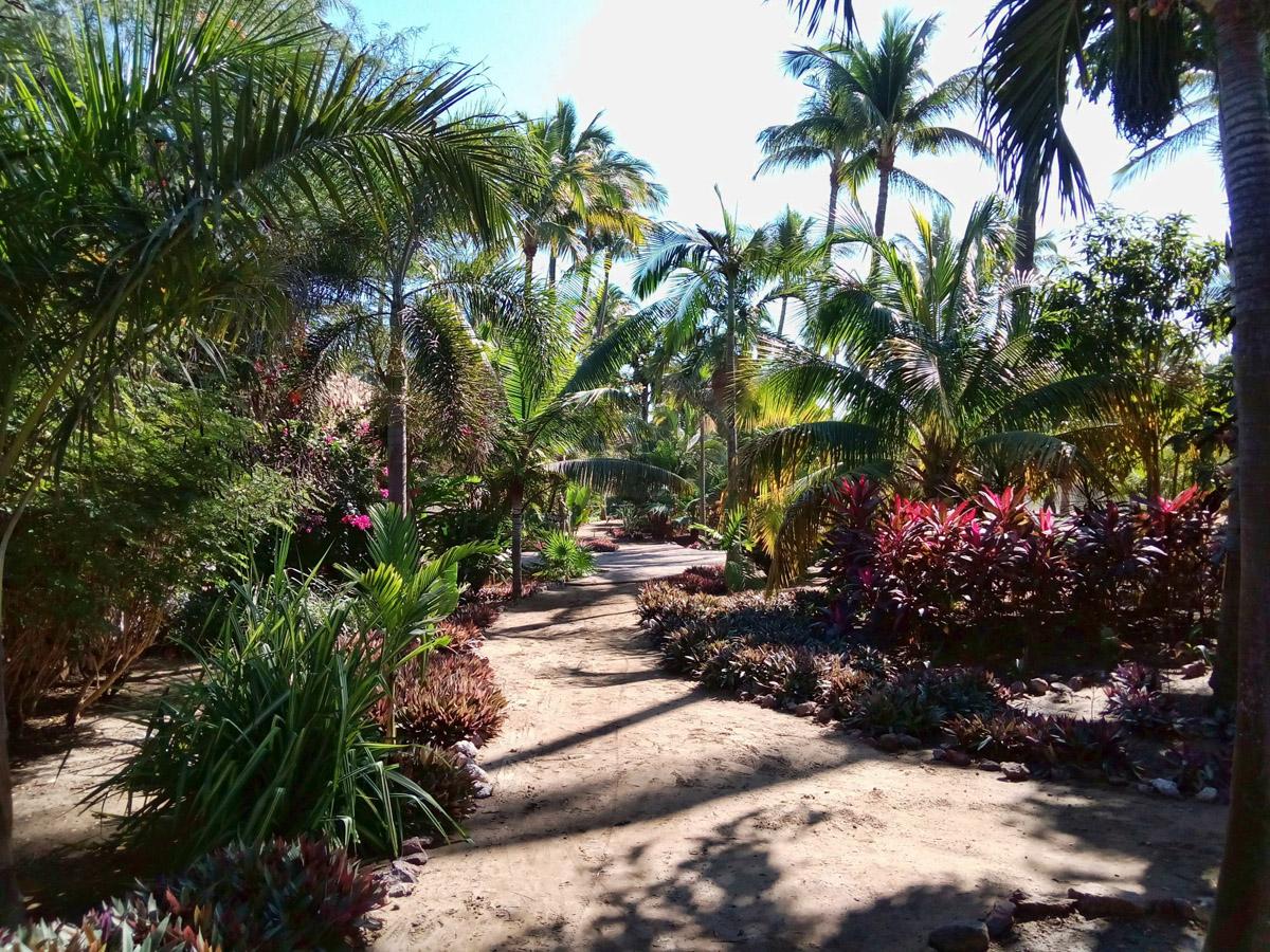 Beautiful botanical gardens just behind the RV Park.