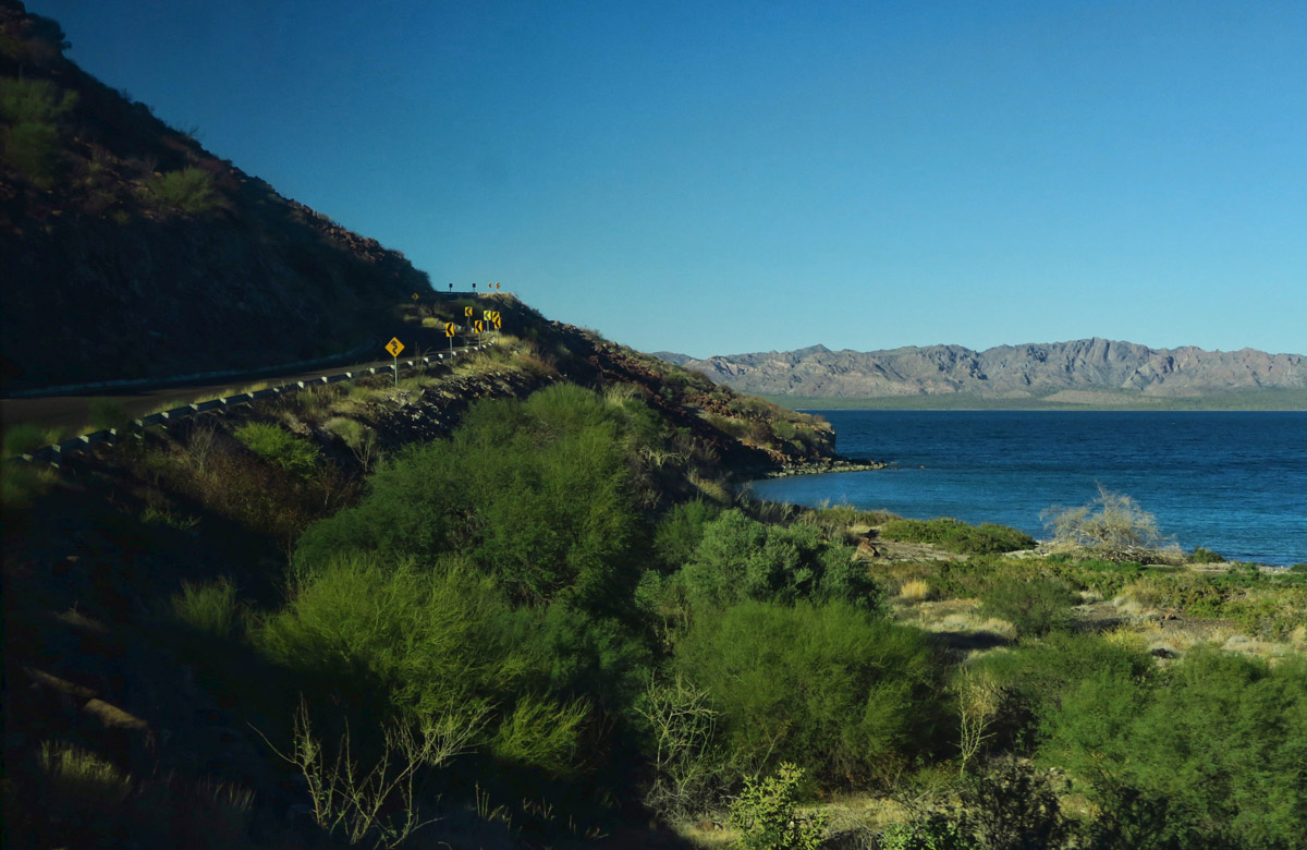 It follows the Sea of Cortez for many miles.