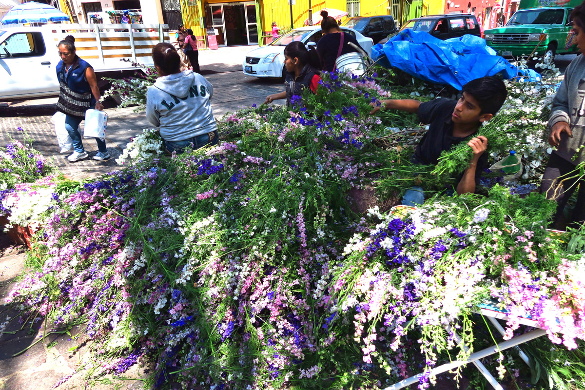 Piles of purple and white flowers have appeared in prep for the building of the altars.